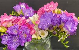 Как правильно ухаживать за срезанными цветами