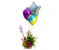 Счастье цветовода